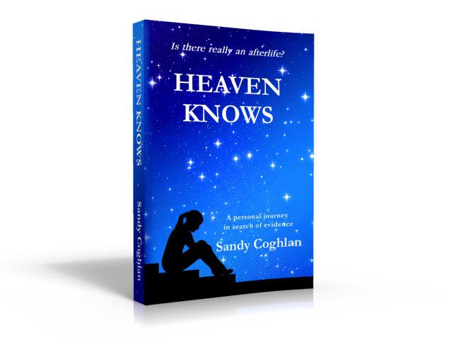 heaven-knows-3d-cover